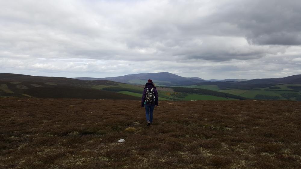 Paysage au sommet du Carn Daimh