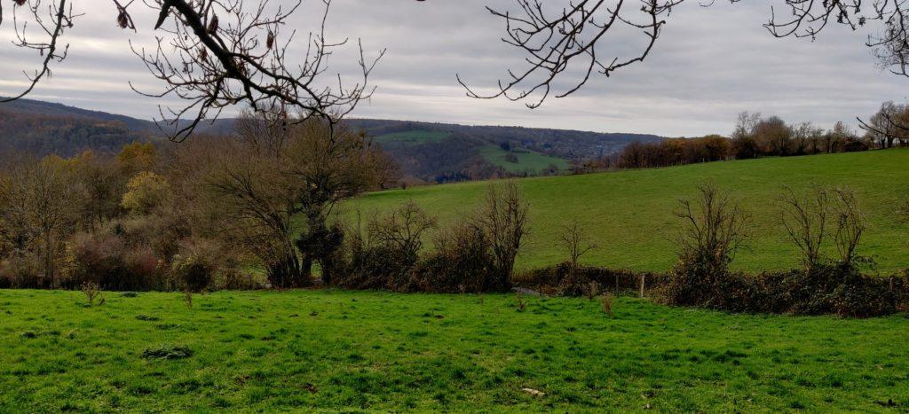 Un paysage croisé au détour de la Balade du Tilleul proposé par la Ferme des Loups