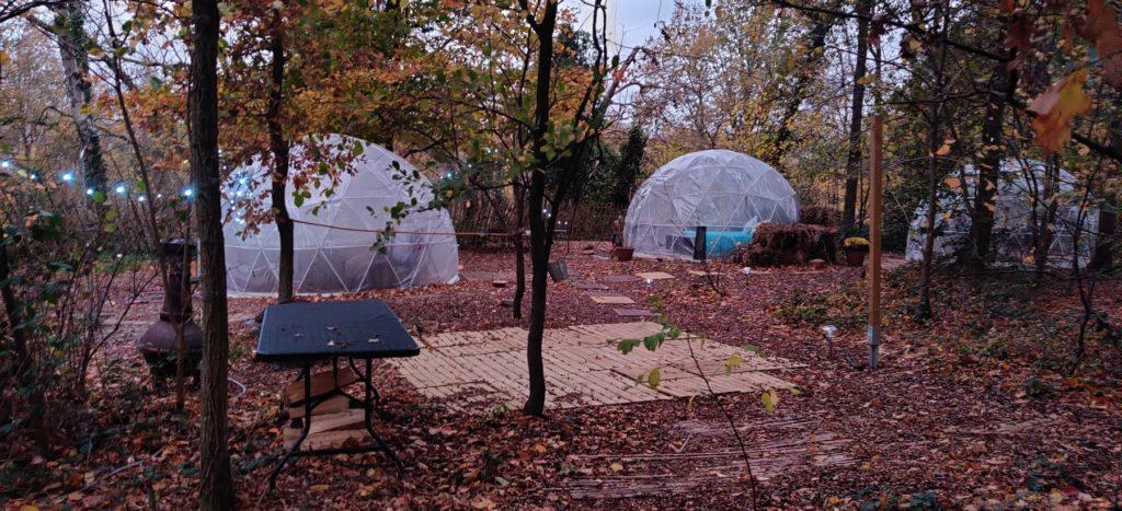 Les bulles au milieu des bois
